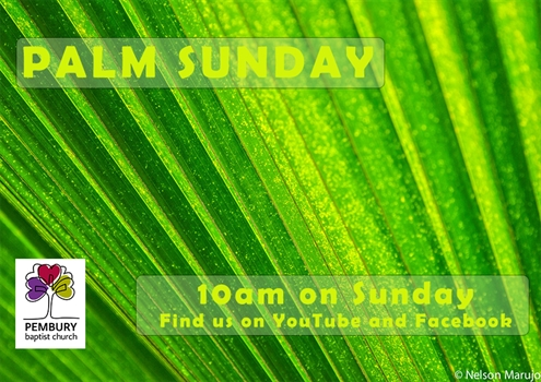 Palm Sunday - Whats Your Story